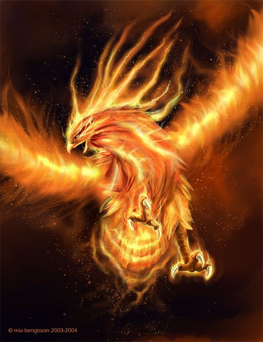 Phoenix Bird Rising From Ashes